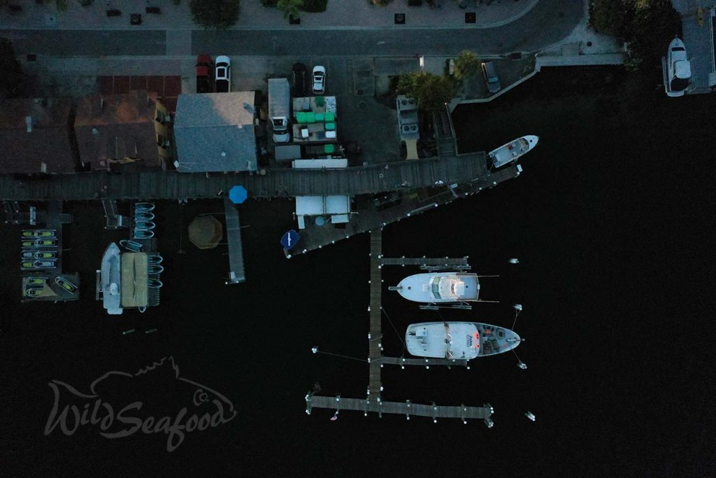 Boats docked in Don's Dock